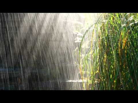 Медитация, релаксация, музыка, шум дождя. Meditation, relaxation, music, the sound of rain,